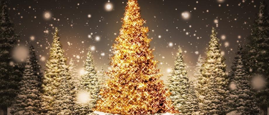 Magical Christmas - Home